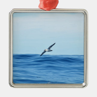 Petrel In Flight Christmas Ornament