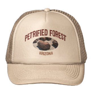 Petrified Forest National Park Cap