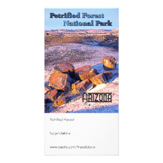 Petrified Forest Vintage Style Photo Greeting Card