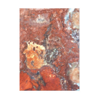Petrified Wood Abstract Stretched Canvas Canvas Print