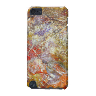 Petrified Wood iPod Touch (5th Generation) Cases