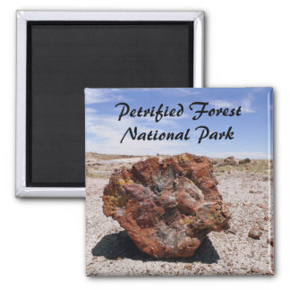Petrified wood square magnet