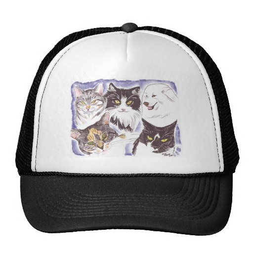 Pets Dogs and Cats Hat