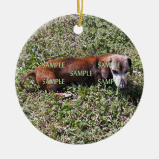 Pets Photo Memorial Ornament