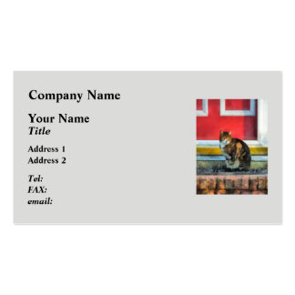 Pets - Tabby Cat by Red Door Pack Of Standard Business Cards