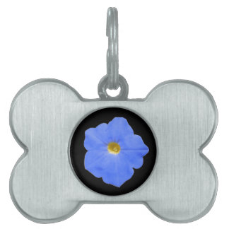 Petunia Blue and Yellow Pet Tag