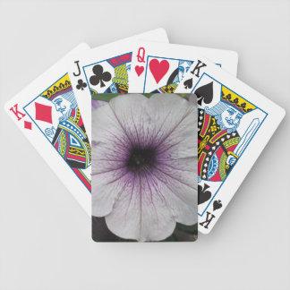 Petunia Purple Close Card Decks