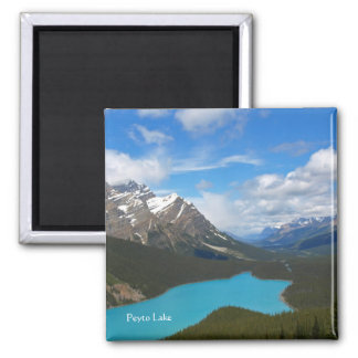 Peyto Lake Magnet