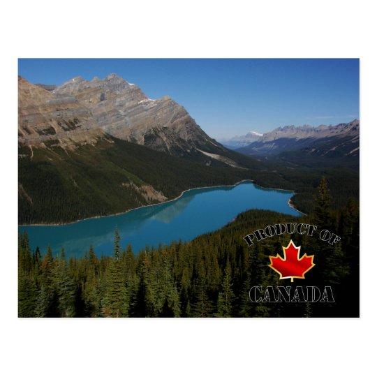 Peyto Lake Product of Canada Postcard