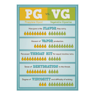 PG vs VG Infographic Print