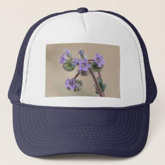 Phacelia Purple Wildflowers Cap