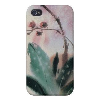 Phalaenopsis iPhone4 Case iPhone 4/4S Case