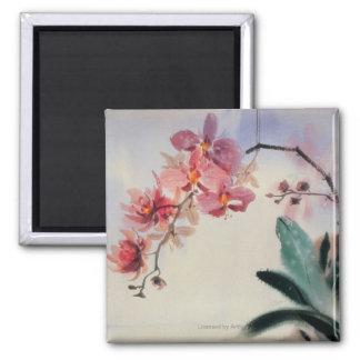 Phalaenopsis Square Magnet