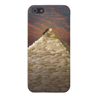 Pharaoh's Inspiration iPhone 5/5S Case