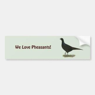 Pheasant Black Hen Car Bumper Sticker