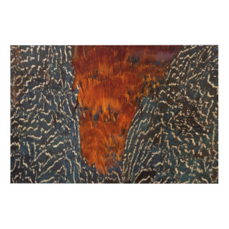 Pheasant Feather Design Abstract Wood Wall Decor