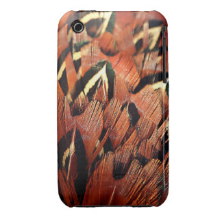Pheasant Feathers iPhone 3 Covers