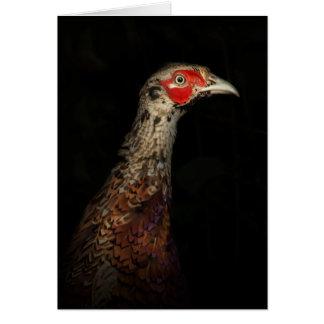 Pheasant Greetings Card
