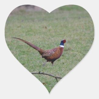 Pheasant Heart Sticker