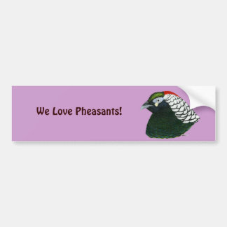 Pheasant:  Lady Amherst Rooster Bumper Sticker