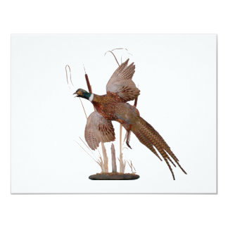 Pheasant Mount 11 Cm X 14 Cm Invitation Card