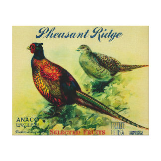 Pheasant Ridge Apple Crate Label Canvas Print