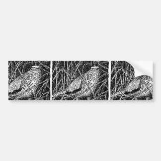 Pheasant (Rooster) Bumper Stickers