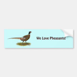 Pheasant Rooster Bumper Sticker
