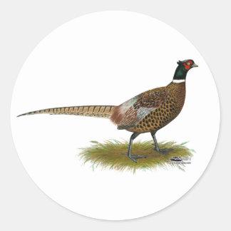Pheasant Rooster Round Sticker