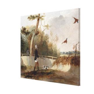 Pheasant Shooting (oil on canvas) Canvas Print