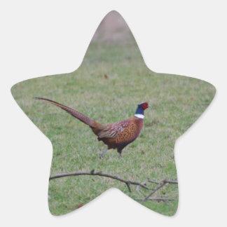 Pheasant Star Sticker