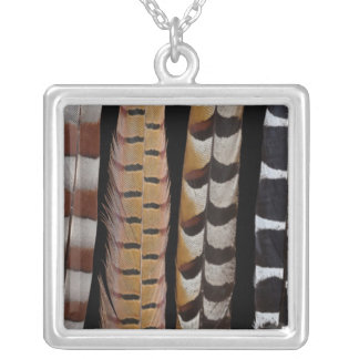 Pheasant tail feathers silver plated necklace