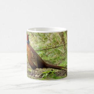 Pheasant - Wild Pheasant Mug