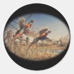 Pheasants Aloft - Great Hunting on the farm