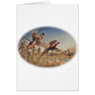 Pheasants Aloft - Great Hunting on the farm Card