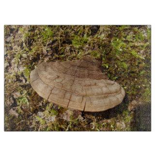 Phellinus igniarius Mushroom Glass Chopping Board