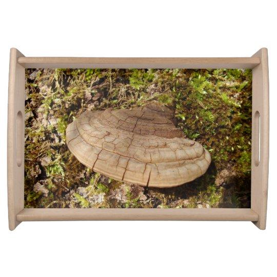 Phellinus igniarius Mushroom Serving Tray