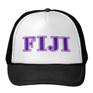 Phi Gamma Delta Purple Letters Cap