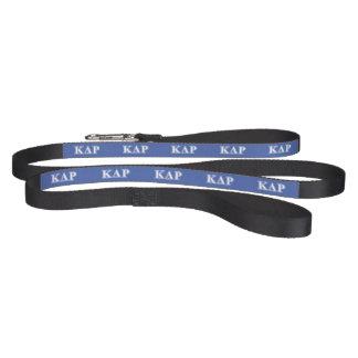 Phi Kappa Theta White and Blue Letters Pet Lead