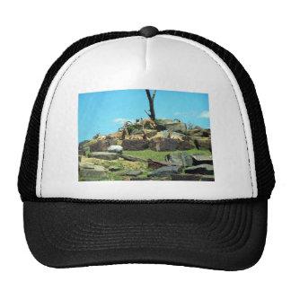 Philadelphia Zoo Cap