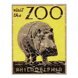 Philadelphia Zoo-Hippo Distressed Poster