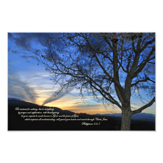 Philippians 4:6,7 Be anxious for nothing Art Photo