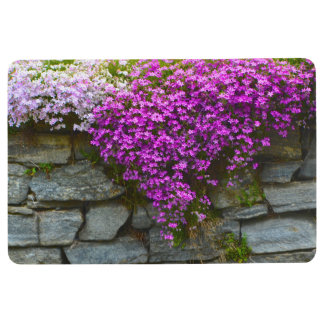 Phlox On Rocks Floor Mat