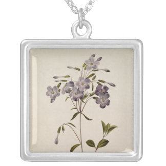Phlox reptans silver plated necklace