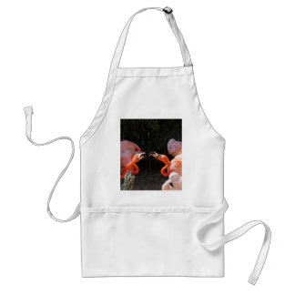 phoenicopterus ruber ruber red flamingo standard apron