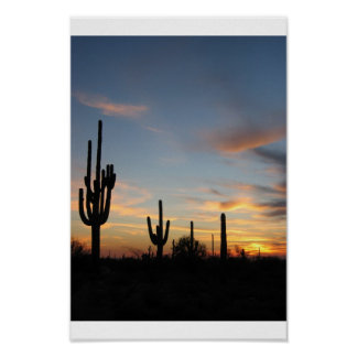 Phoenix Arizona cactus sunset Poster