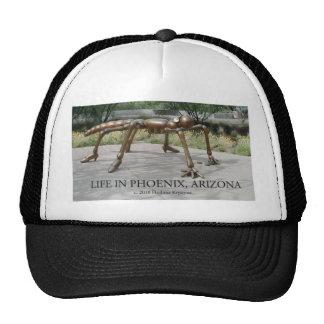 Phoenix Arizona Insects Hats