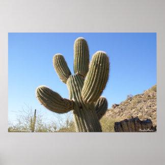 Phoenix Arizona Poster