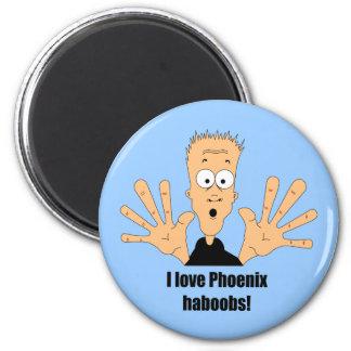 Phoenix haboobs 6 cm round magnet
