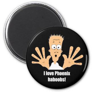 Phoenix haboobs fridge magnet
